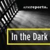 In the Dark artwork