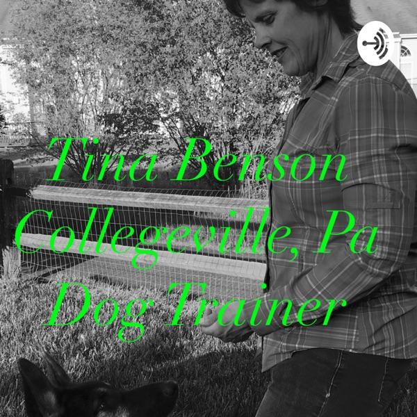 Tina's Simple Savvy Dog Training Tips