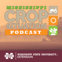 Mississippi Crop Situation Podcast podcast