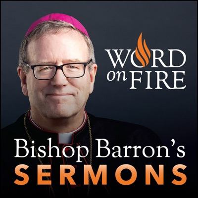 Bishop Robert Barron's Sermons - Catholic Preaching and Homilies:Bishop Robert Barron