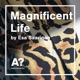 Magnificent Life by philosopher Esa Saarinen