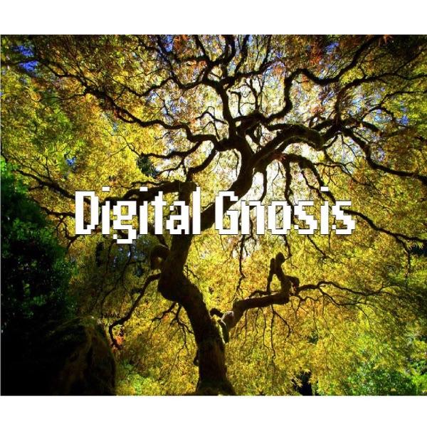 Digital Gnosis