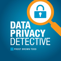 Data Privacy Detective - how data is regulated, managed, protected, collected, mined, stolen, defended and transcended. podcast