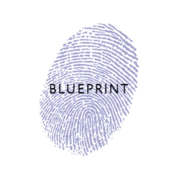 Blueprint Coaching Podcast