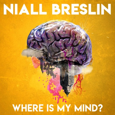Where Is My Mind?:Niall Breslin