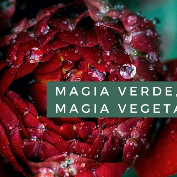 Magia verde, magia vegetal
