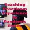 Teaching Practicum Experience in Pandemic Times. artwork