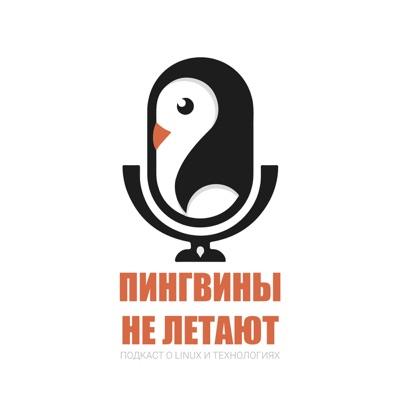 Пингвины не летают