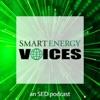 Smart Energy Voices artwork