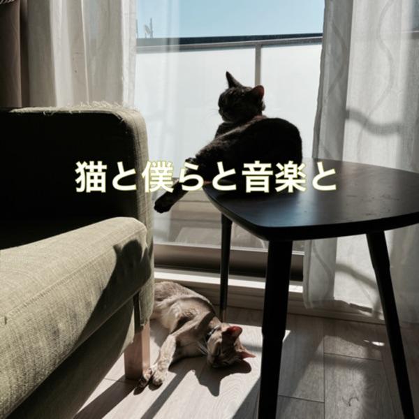 猫と僕らと音楽と
