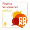 Finance for resilience brought to you by CDKN artwork
