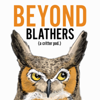 Beyond Blathers podcast