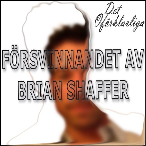 Försvinnandet av Brian Shaffer