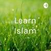 Learn Islam artwork