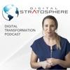Digital Stratosphere: Digital Transformation, ERP, HCM, and CRM Implementation Best Practices artwork
