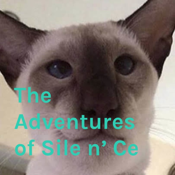 The Adventures of Sile n' Ce