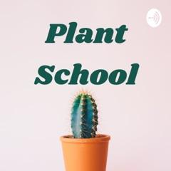 Plant School