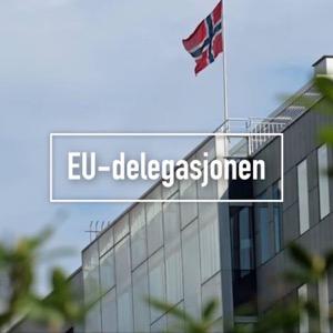 EU-delegasjonen
