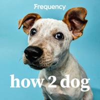 How 2 Dog