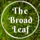 The Broad Leaf