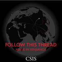 Follow This Thread: Made in Xinjiang? podcast