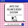 Into the Feline's Body System artwork