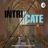 Intricate; The jakes Ekuma Podcast. artwork