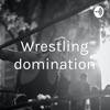 Wrestling domination artwork