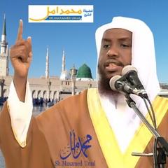 SheikhUmal
