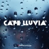Café Lluvia artwork