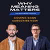 Why Meaning Matters artwork
