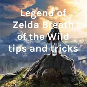 Legend of Zelda Breath of the Wild tips and tricks