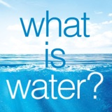 Book Review: What Is Water? How Young Leaders Can Thrive in an Uncertain World | Ep 80