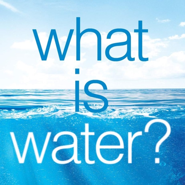 Book Review: What Is Water? How Young Leaders Can Thrive in an Uncertain World | Ep 80 photo