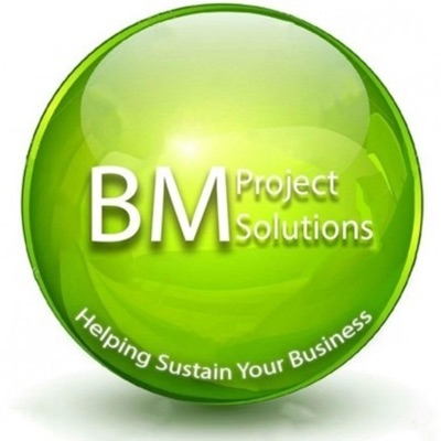 Business Management Project Solutions