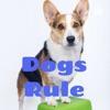 Dogs Rule artwork