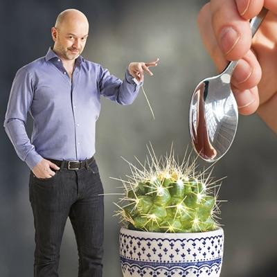Le cactus:RTBF