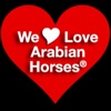 We LOVE Arabian Horses! artwork
