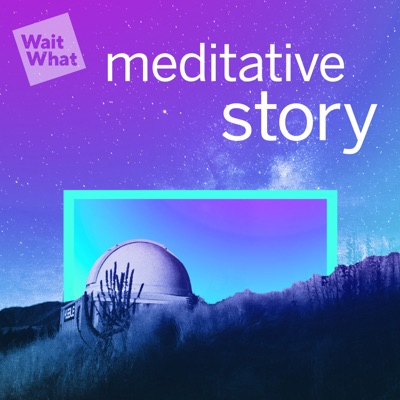 Meditative Story:WaitWhat