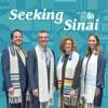 Seeking Sinai artwork