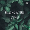 Relaxing Natural Sounds