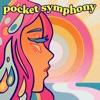 Pocket Symphony: A Beach Boys Podcast artwork