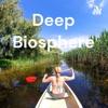 Deep Biosphere artwork