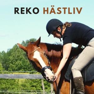 Reko Hästliv - Podden för bättre relation med din häst