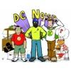 DC Noise artwork