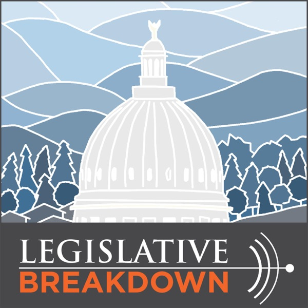 Legislative Breakdown