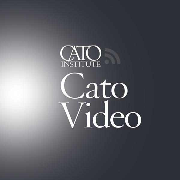 Cato Video