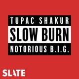 Image of Slow Burn podcast