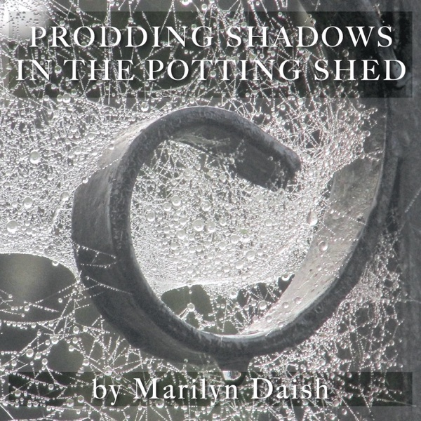 Prodding Shadows in the Potting Shed