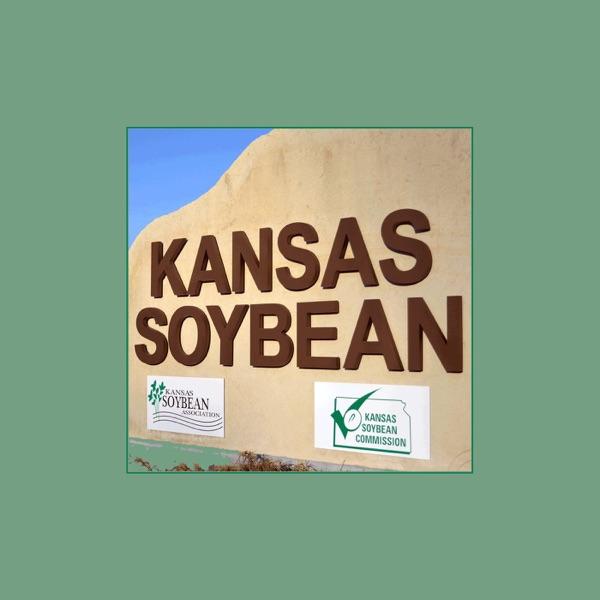 Kansas Soybean Update